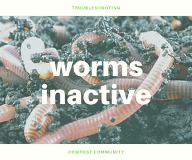 Inactive worms