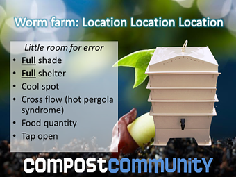 Tips for locating a worm farm